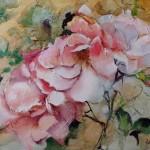 Roses Soir de Bonheur
