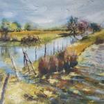 Les marais de Talmont-Saint-Hilaire