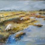 les moutons du Marais de Talmont St Hilaire
