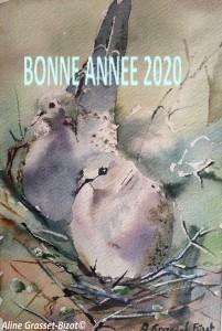 CoupleTourterellesSurNid Voeux 2020